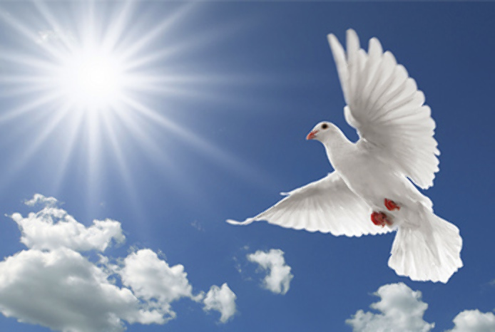 world-peace-day-2